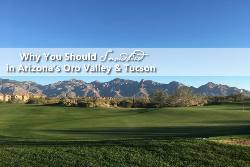 Why You Should Snowbird In Oro Valley